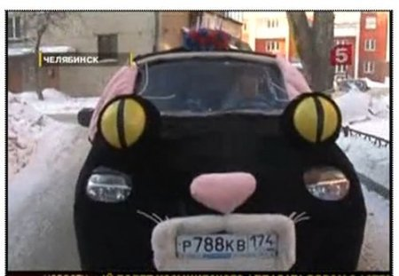 Челябинский автокот