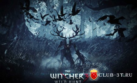 �������� ���� The Witcher 3 Wild Hunt ( ������� 3 ����� ����� )