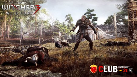 The Witcher 3 Wild Hunt Trainer version 1.11 + 13