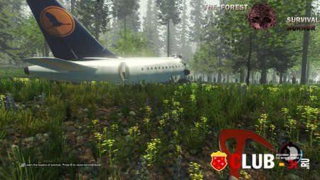 The Forest Trainer version 0.33d + 9