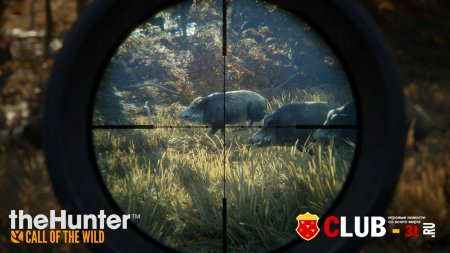 theHunter: Call of the Wild Trainer version 1.6 + 12